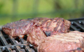 Met behulp van een Big Bear Paw voor Grote Stukken Vlees in Uw Grill